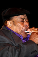 King Biscuit Blues James Cotton 2012